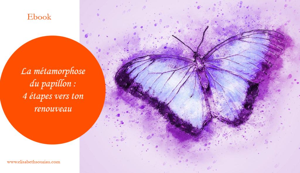 metamorphose du papillon
